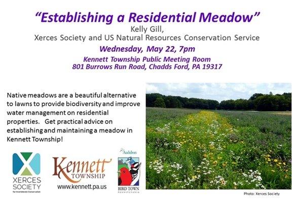 Establishing a residential meadow